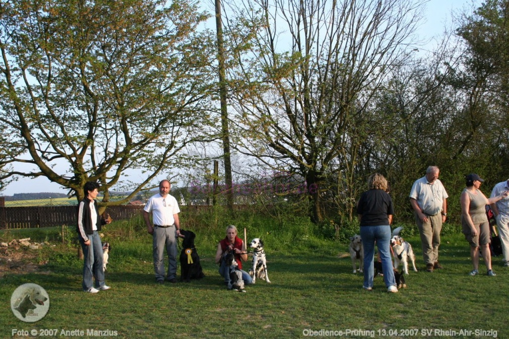 IMG2007-04-13 033