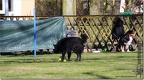 OB-Training_25-03-2012