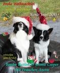Weihnachtskarte Button-Jaimie 2014 V2 2000x weich